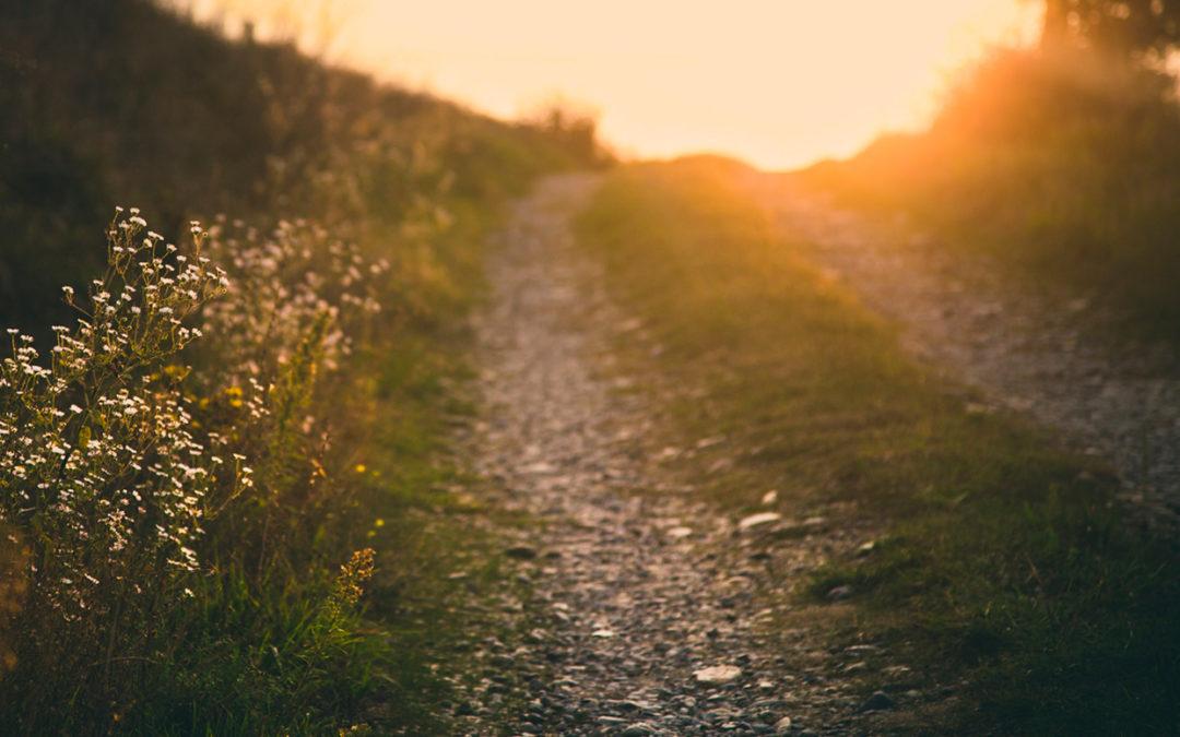 La naturopathie, un chemin d'autonomie